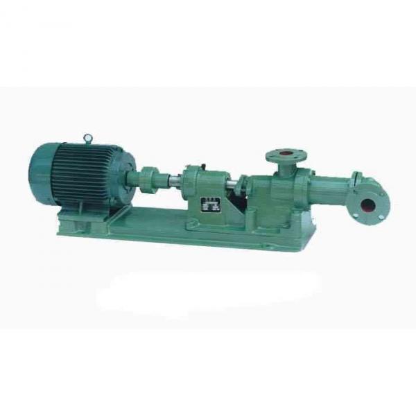 SUMITOMO QTM32-12.5-3.7-1R-C Double Gear Pump #1 image